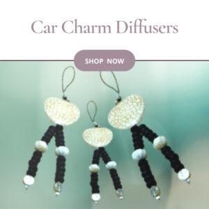 Car Charm Diffusers